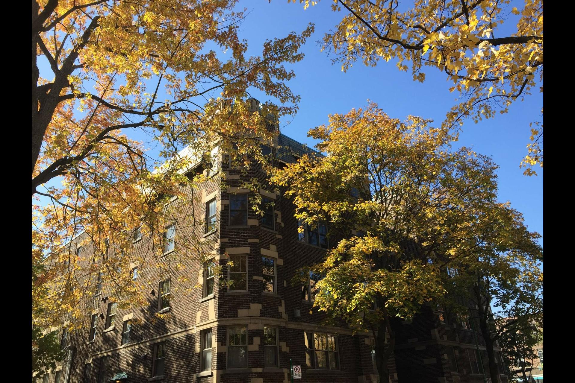 image 8 - Apartment For sale Montréal Outremont  - 5 rooms