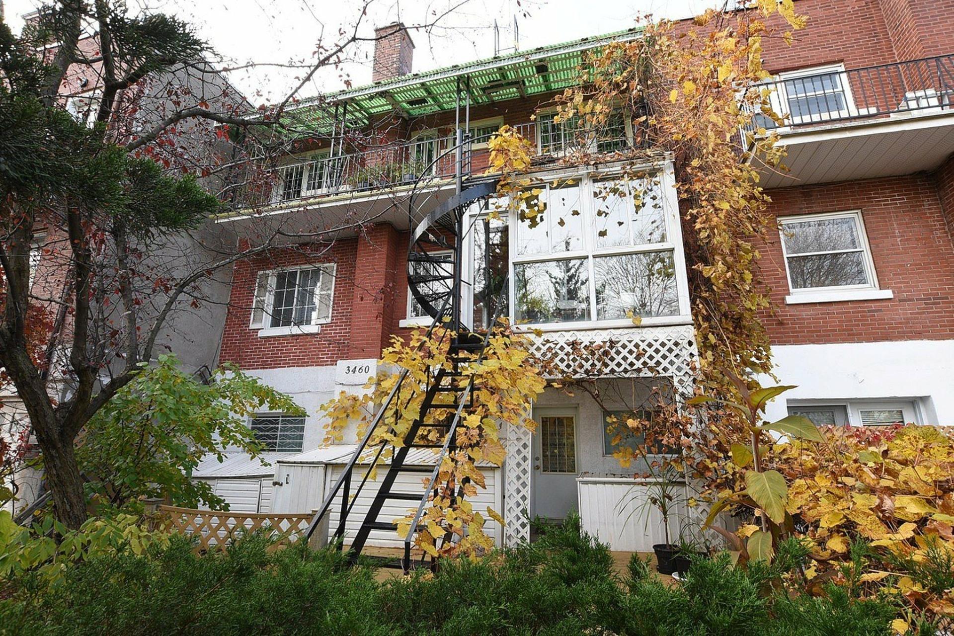 image 25 - Triplex For sale Montréal Mercier/Hochelaga-Maisonneuve  - 12 rooms