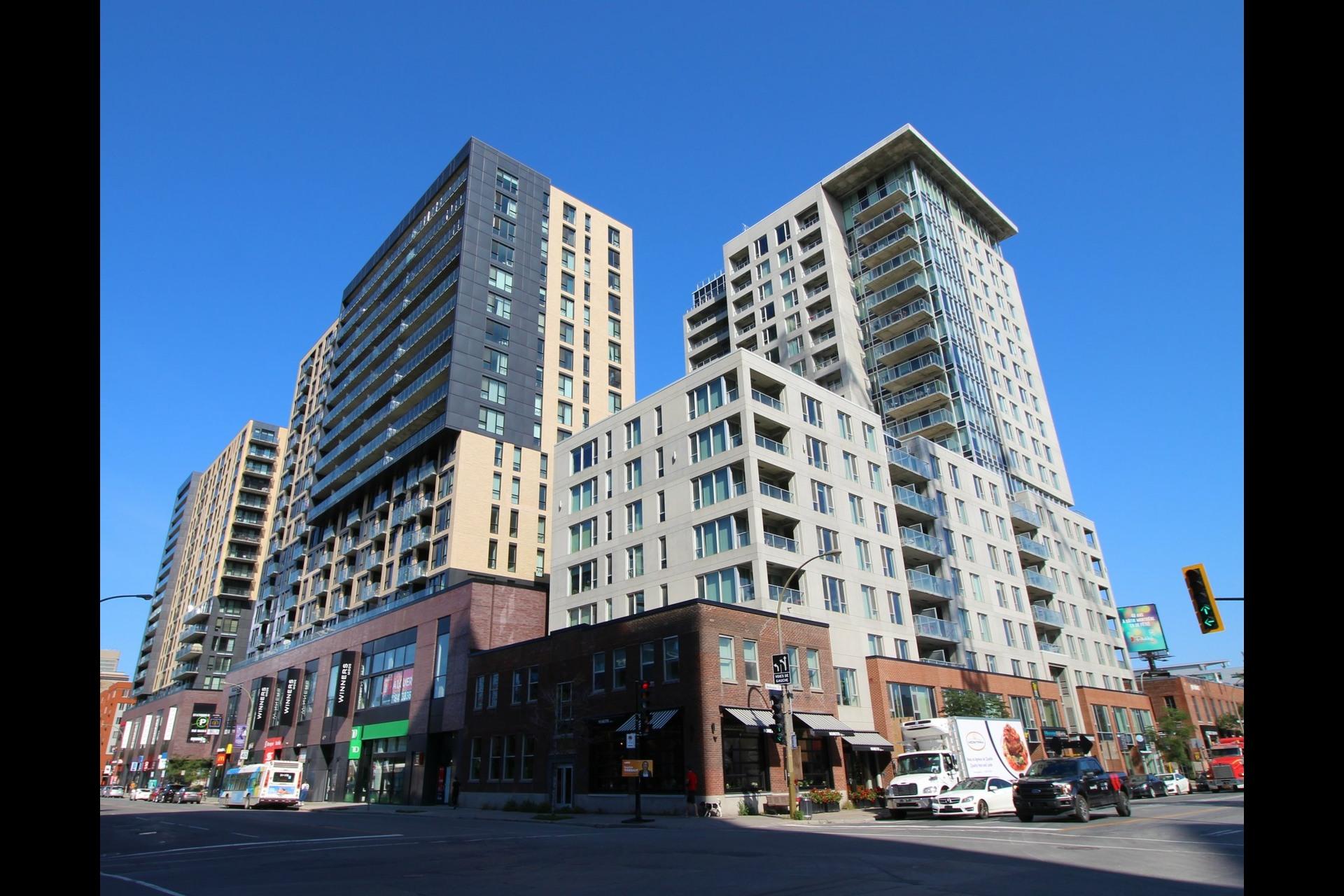 image 0 - Appartement À louer Montréal Le Sud-Ouest  - 6 pièces