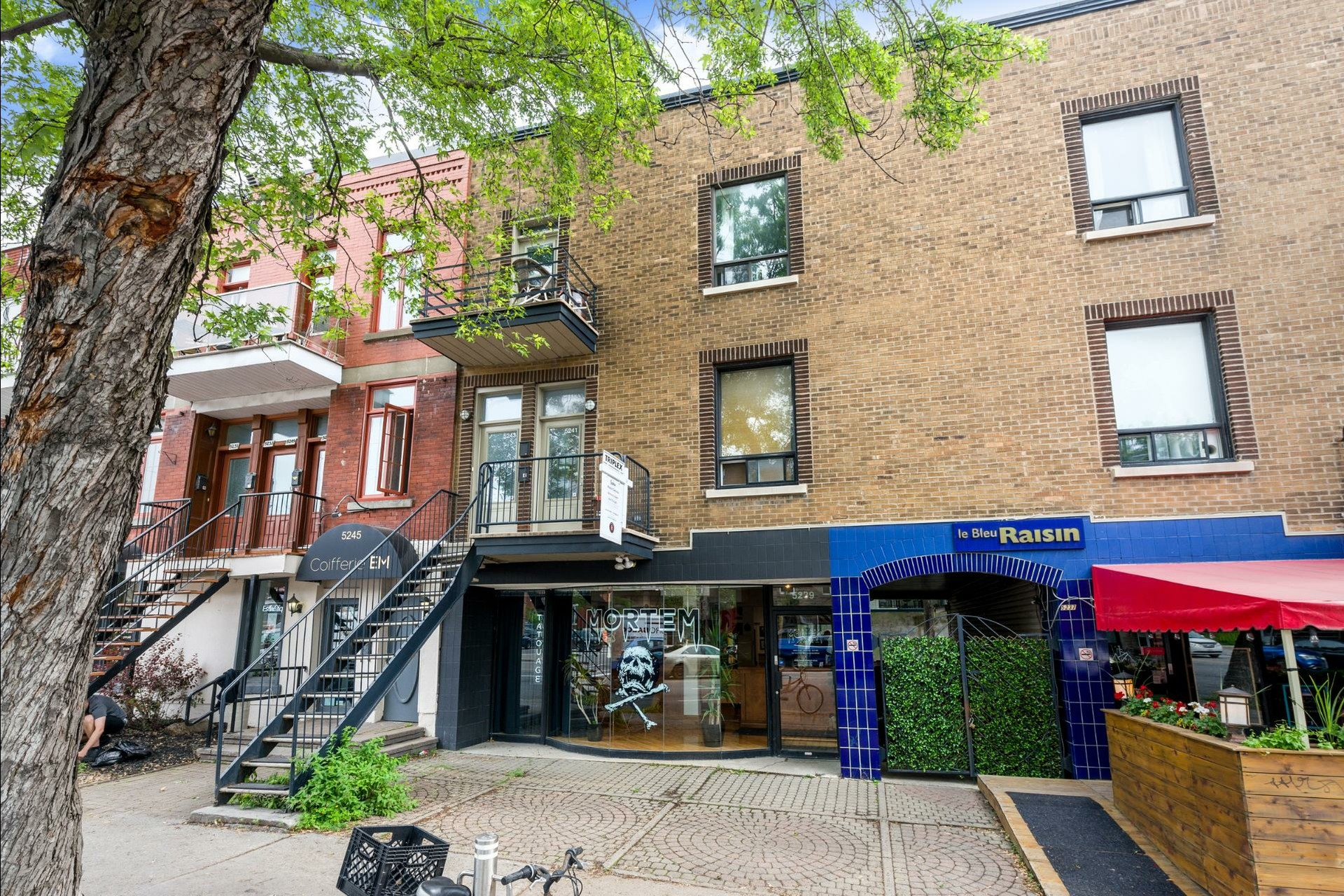 image 20 - Triplex For sale Montréal Le Plateau-Mont-Royal  - 6 rooms