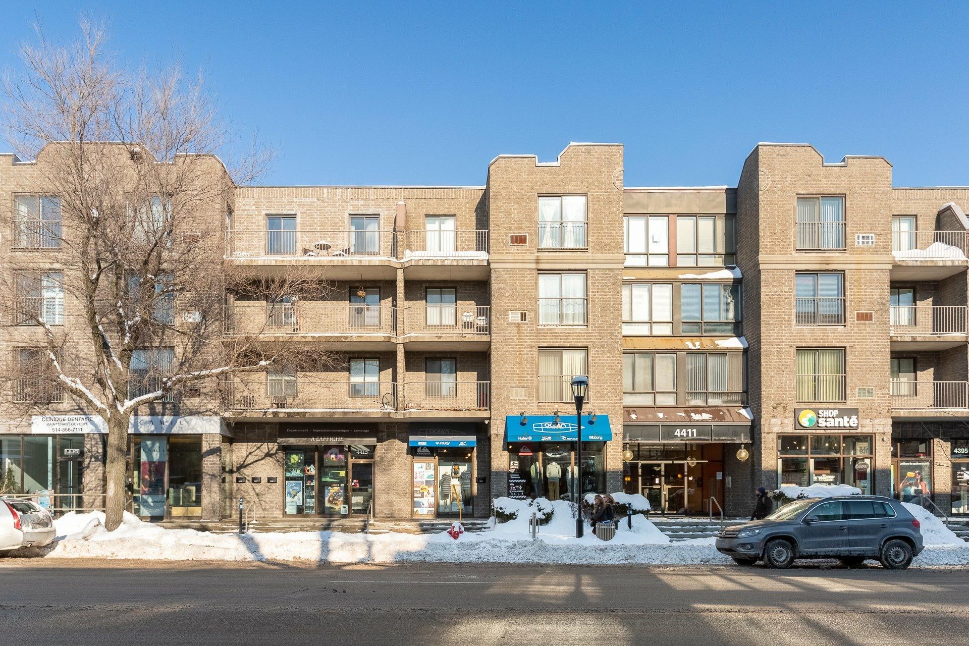 image 0 - Appartement À vendre Montréal Le Plateau-Mont-Royal  - 8 pièces