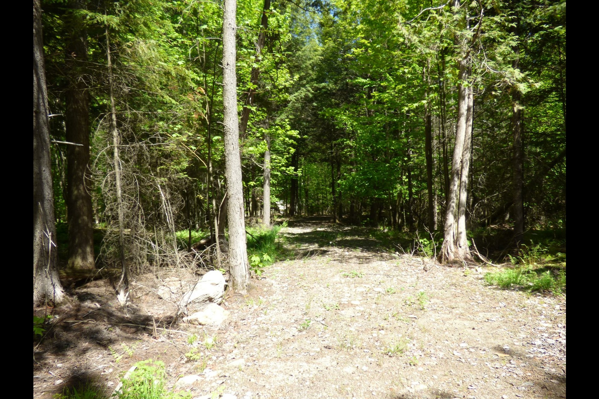 image 2 - Land For sale Amherst