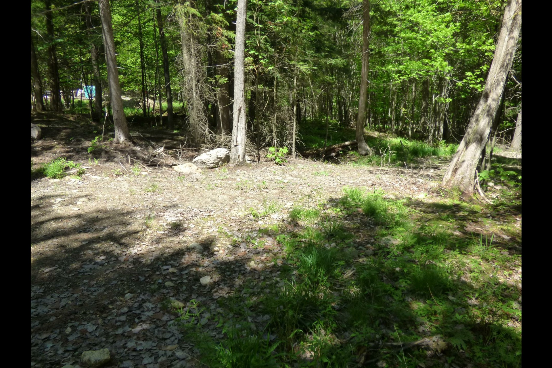 image 3 - Land For sale Amherst