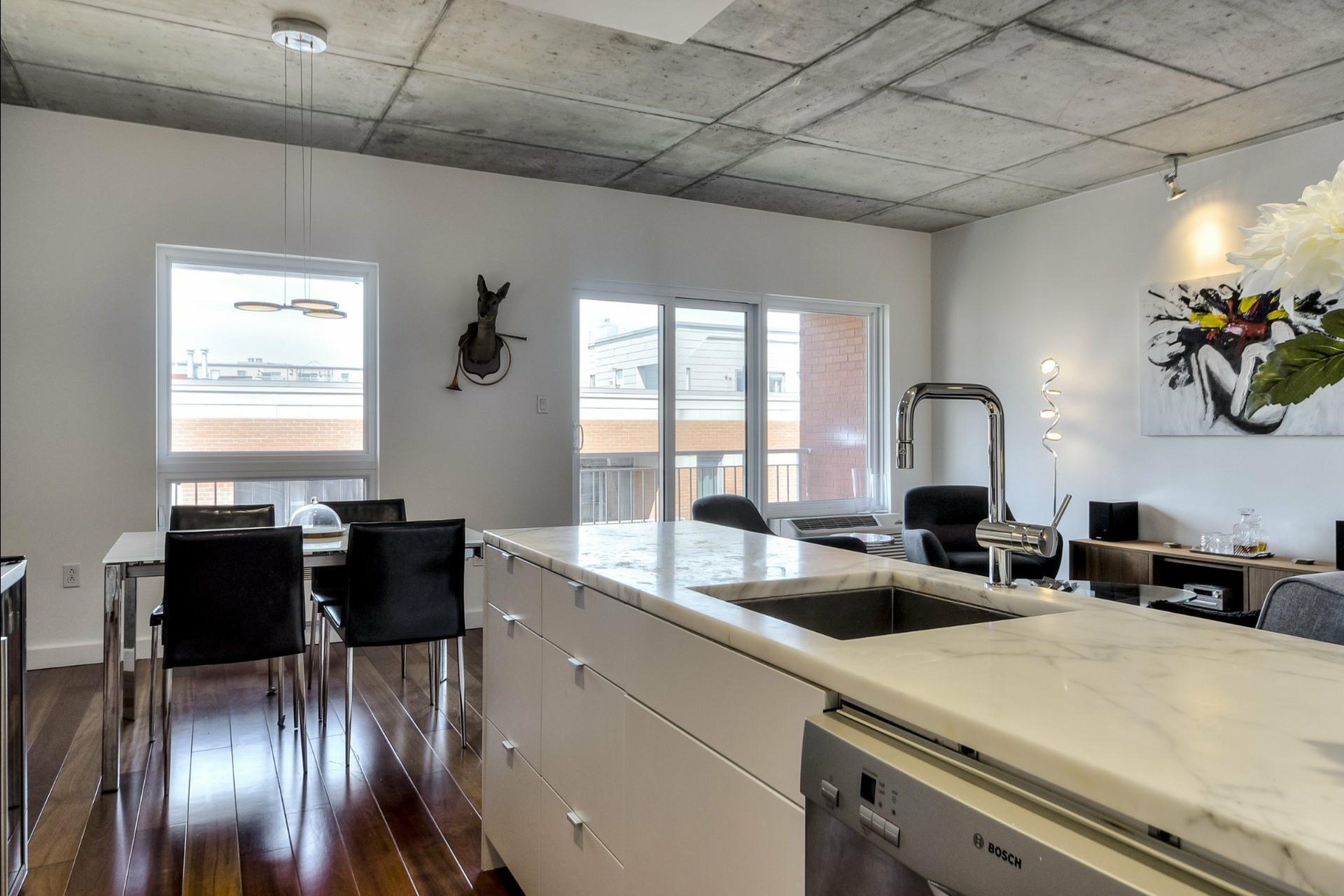 image 12 - Appartement À vendre Montréal Le Plateau-Mont-Royal  - 6 pièces