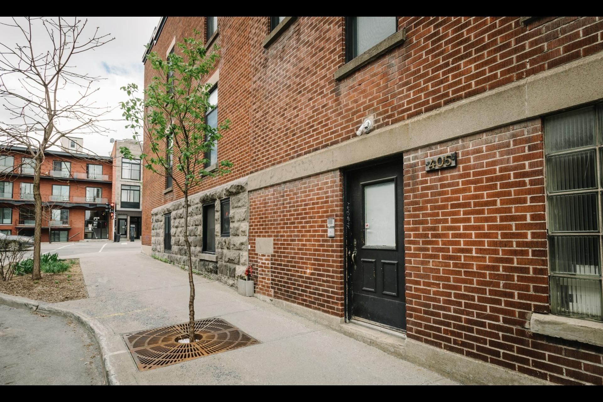 image 23 - Appartement À vendre Montréal Le Plateau-Mont-Royal  - 5 pièces