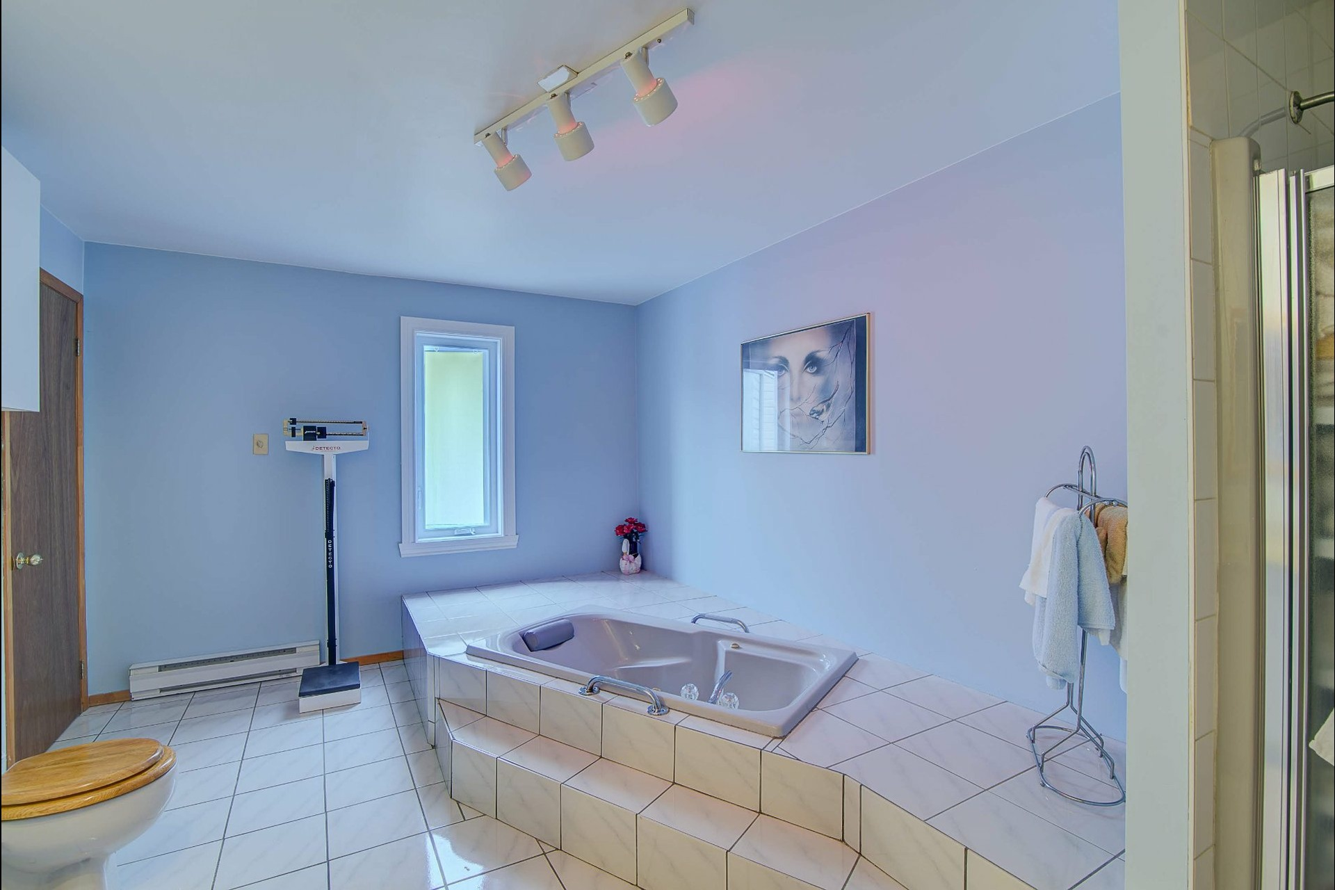 image 16 - Maison À vendre Terrebonne La Plaine  - 9 pièces