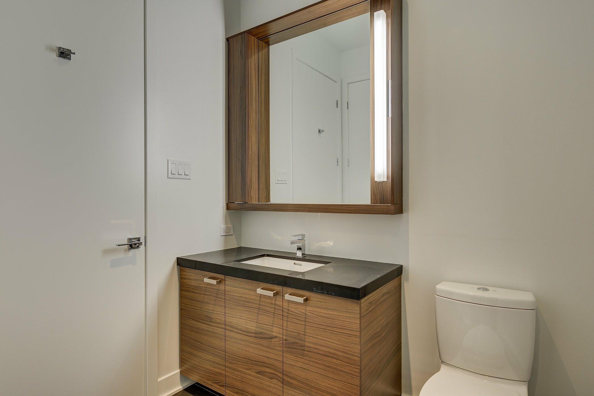 image 12 - Appartement À vendre Montréal Ville-Marie  - 4 pièces