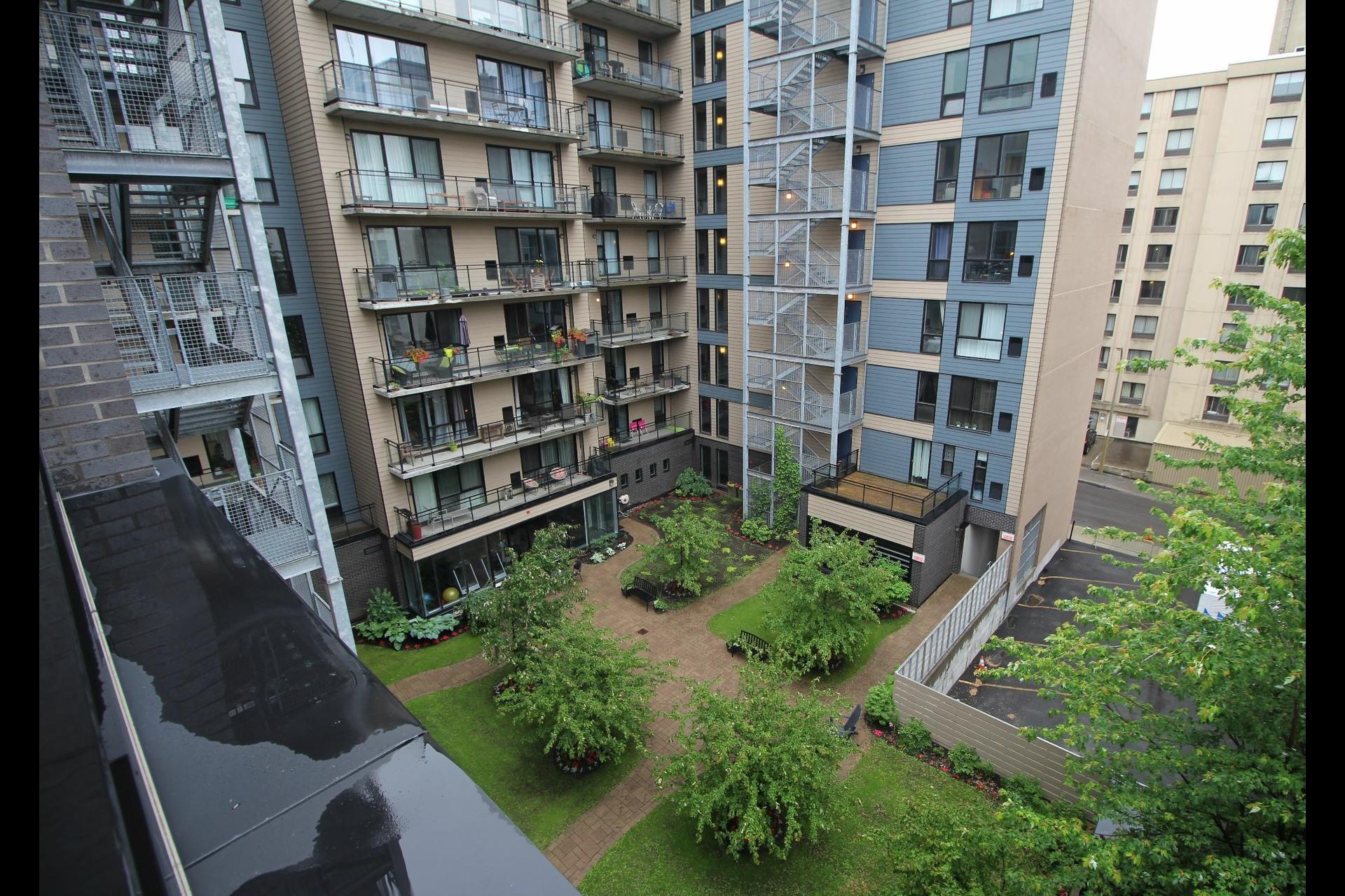 image 4 - Appartement À vendre Montréal Ville-Marie  - 5 pièces