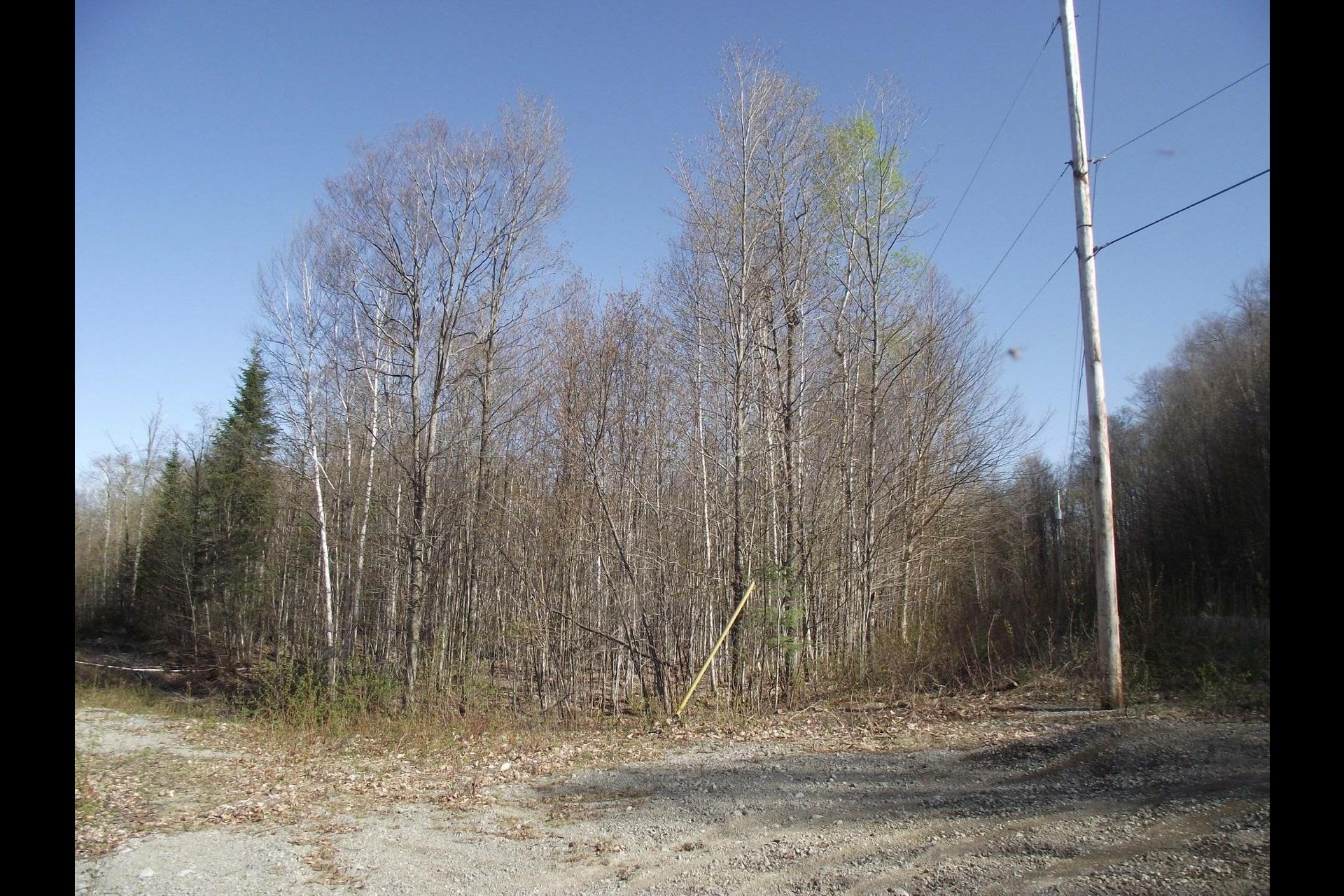 image 4 - Terrain À vendre Chertsey