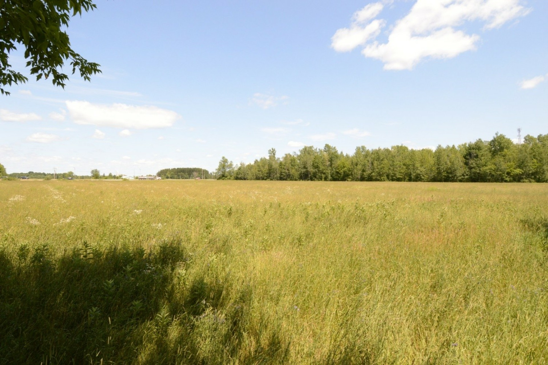 image 21 - Farmhouse For sale Rigaud - 8 rooms