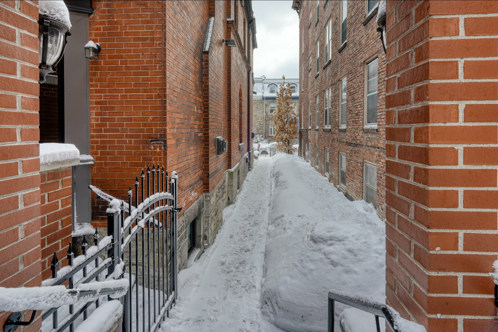 image 22 - Appartement À vendre Le Plateau-Mont-Royal Montréal  - 3 pièces