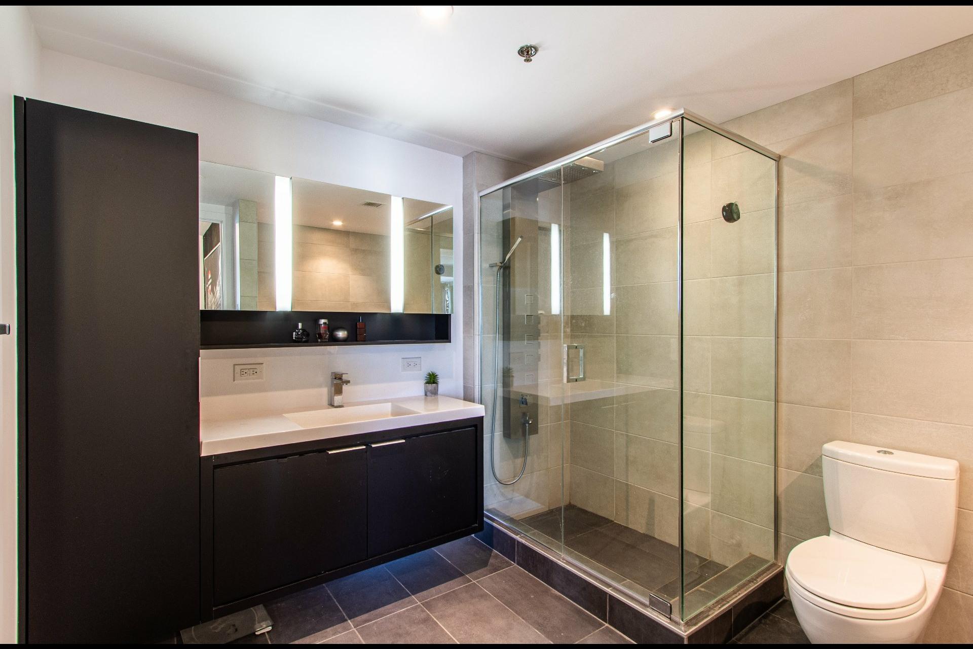 image 17 - Appartement À vendre Le Sud-Ouest Montréal  - 6 pièces