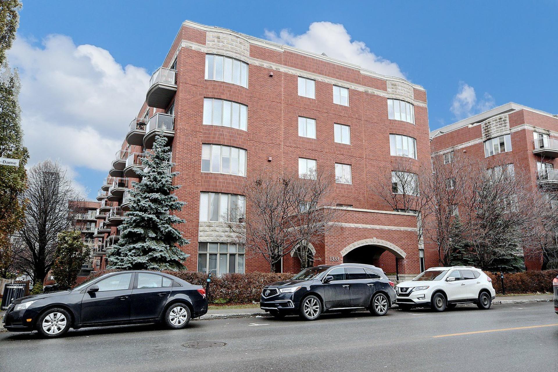 image 0 - Apartment For rent Ville-Marie Montréal  - 5 rooms