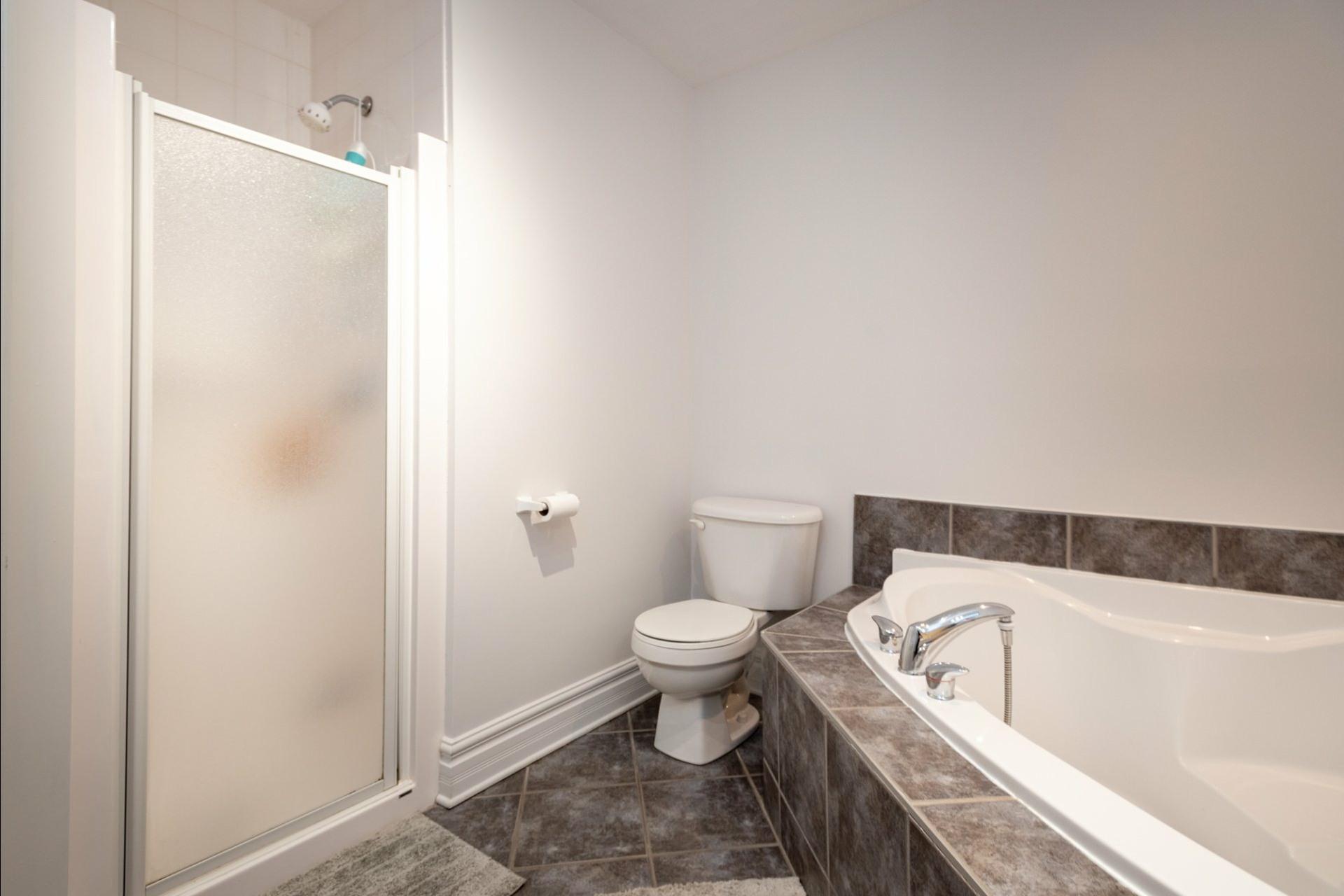 image 20 - Appartement À vendre Le Plateau-Mont-Royal Montréal  - 7 pièces