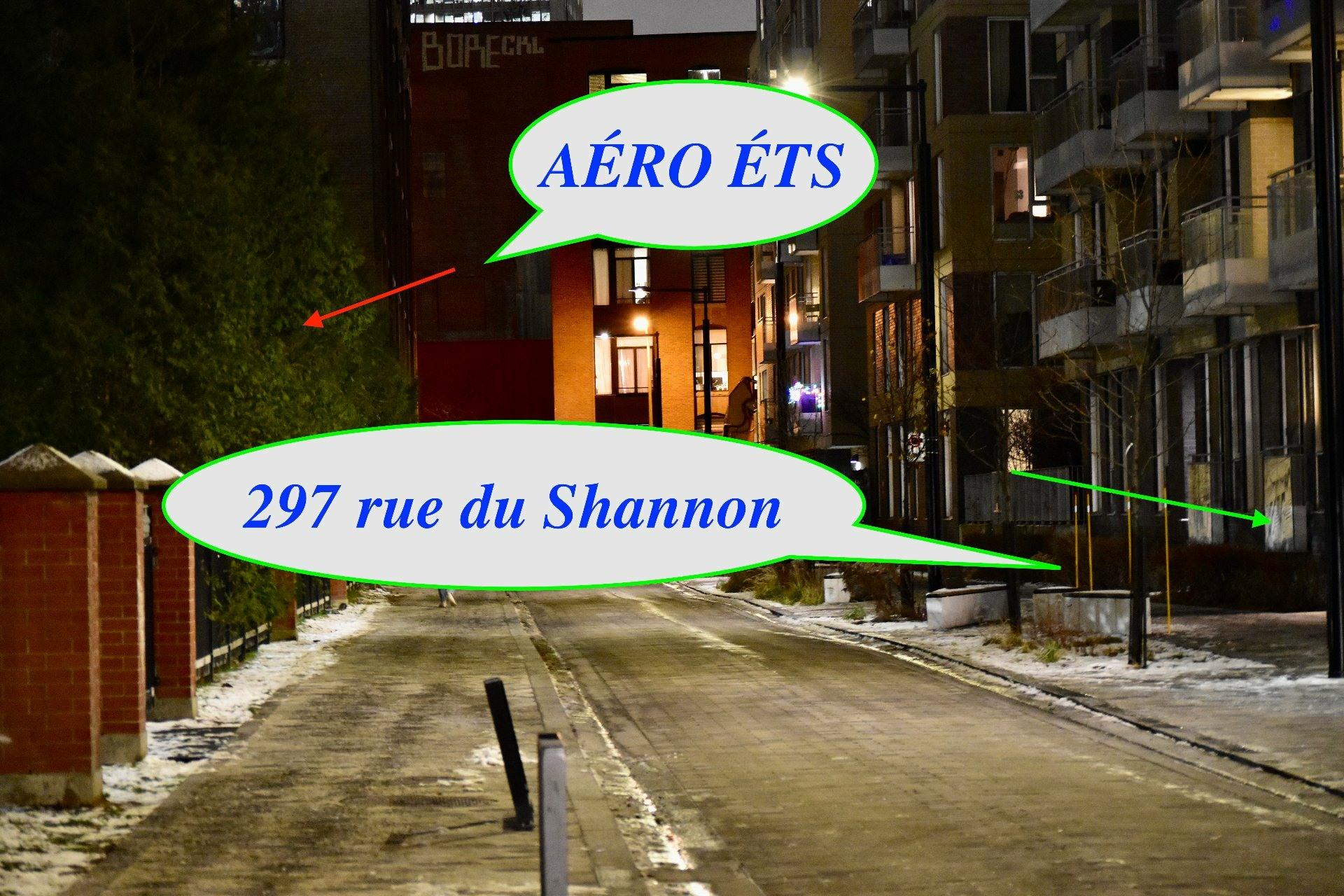 image 58 - Appartement À vendre Le Sud-Ouest Montréal  - 11 pièces