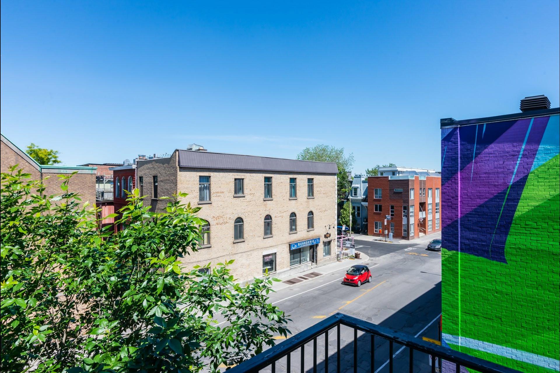 image 34 - Apartment For rent Le Plateau-Mont-Royal Montréal  - 7 rooms