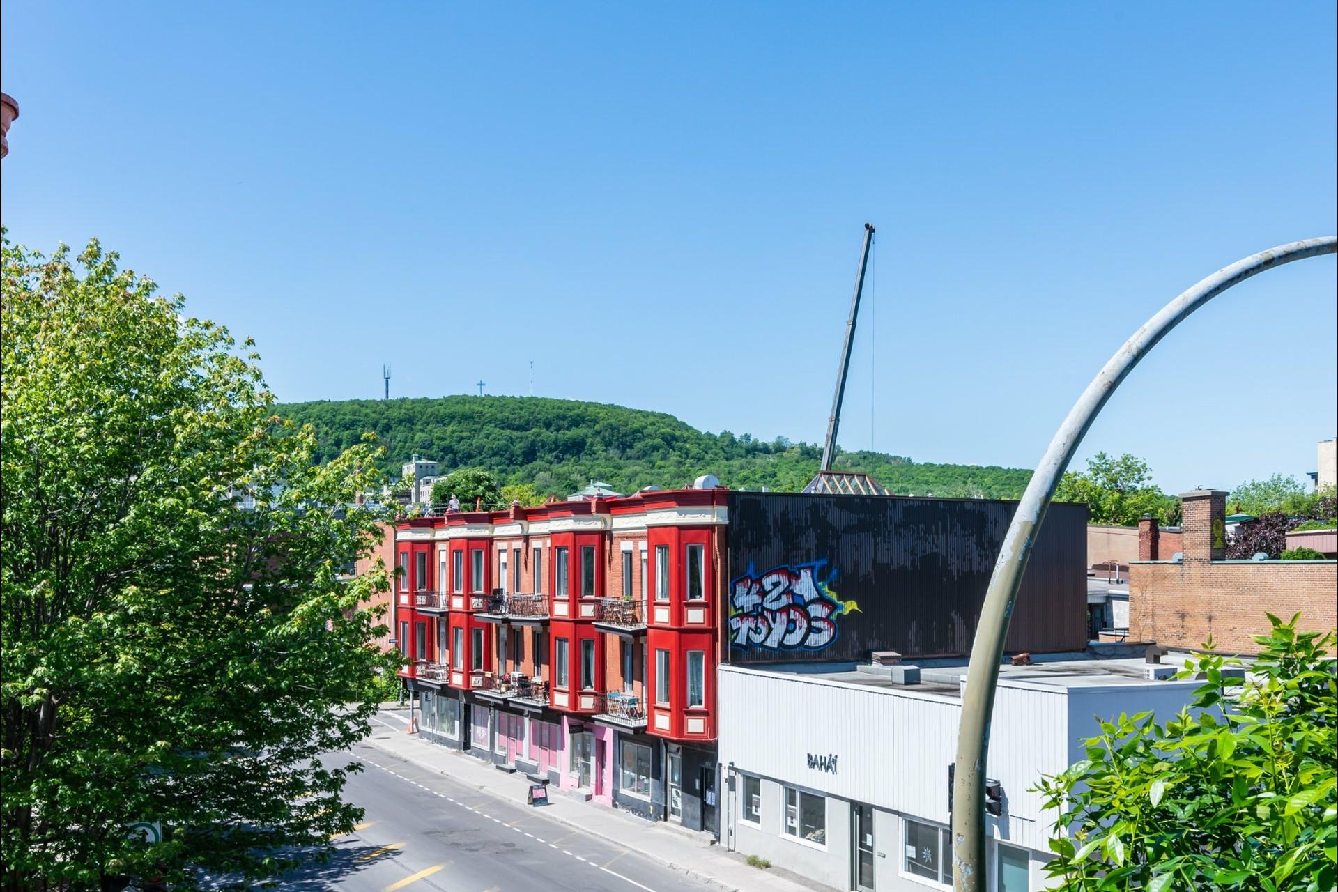 image 33 - Apartment For rent Le Plateau-Mont-Royal Montréal  - 7 rooms