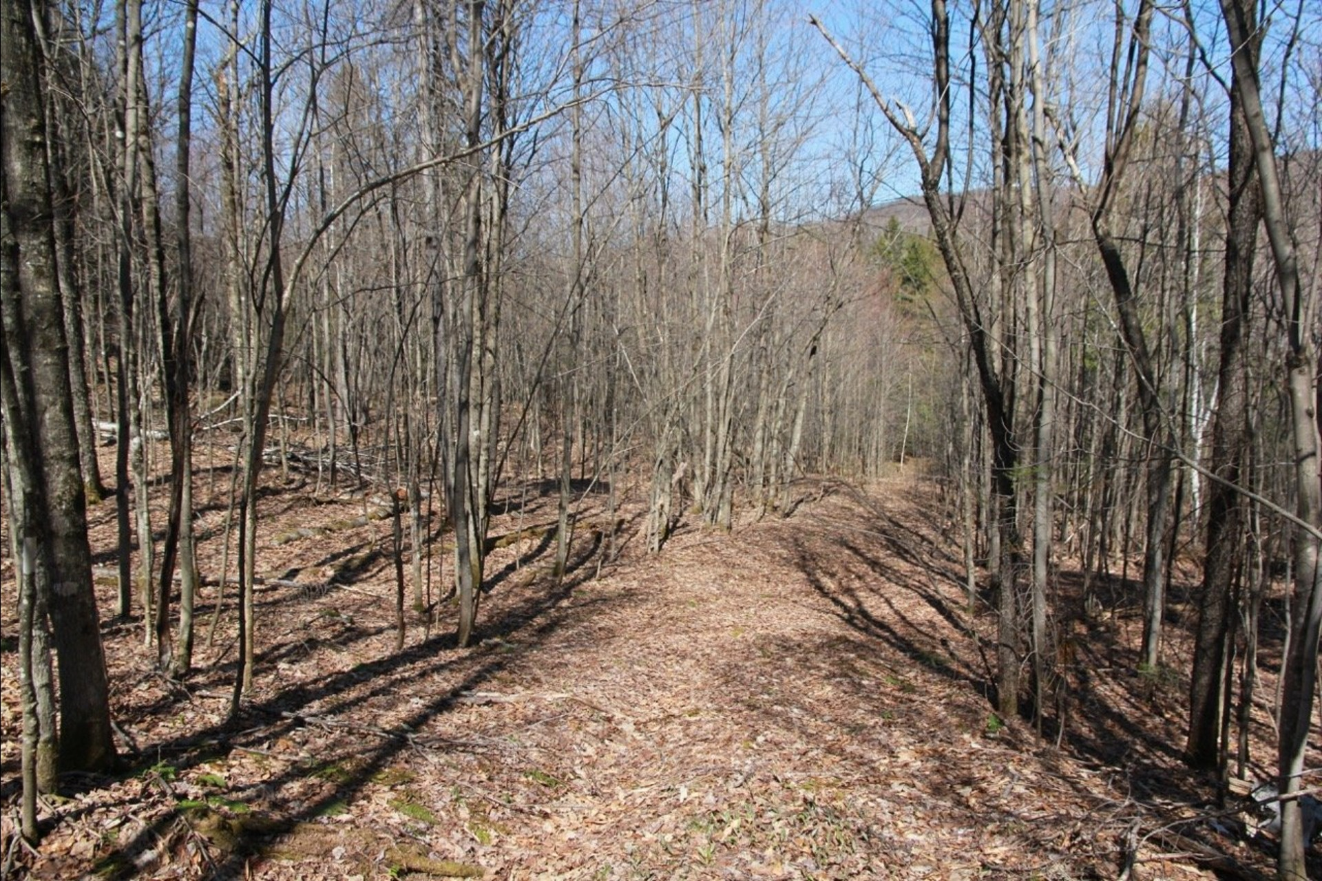 image 2 - Land For sale Wentworth-Nord