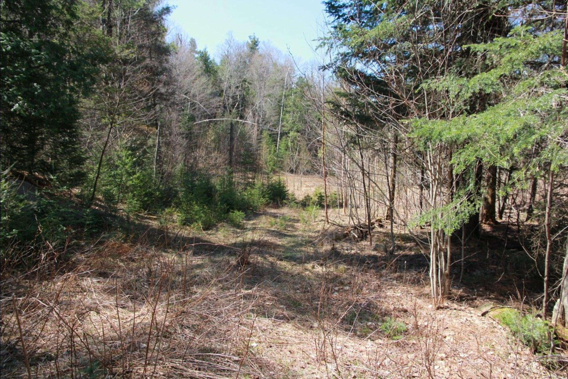 image 3 - Land For sale Wentworth-Nord