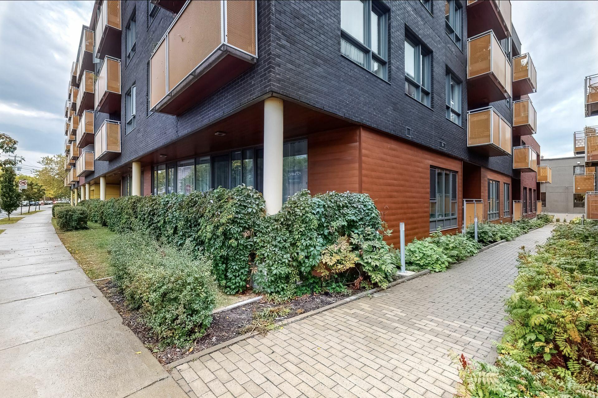 image 0 - Appartement À vendre Rosemont/La Petite-Patrie Montréal  - 3 pièces