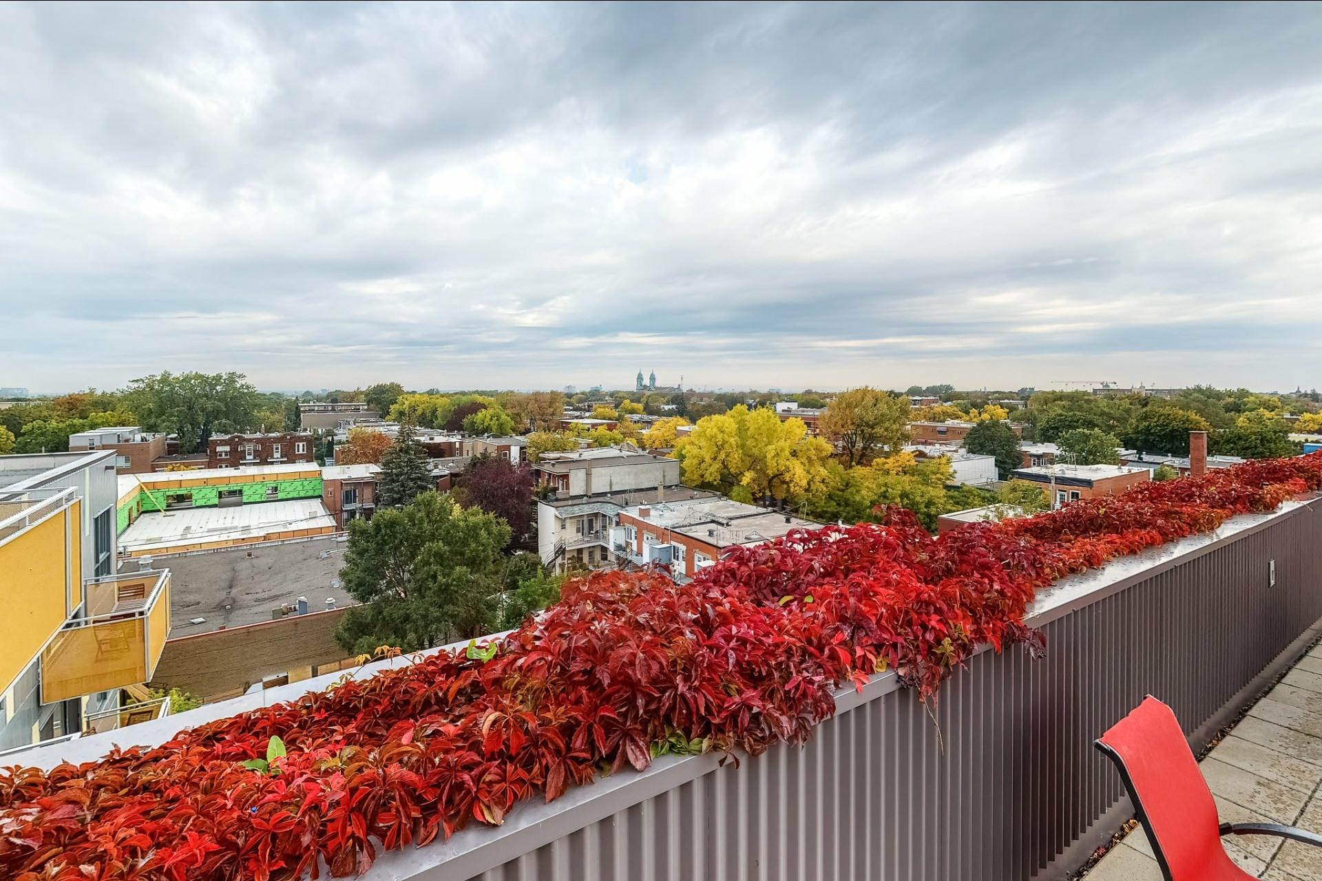 image 17 - Appartement À vendre Rosemont/La Petite-Patrie Montréal  - 3 pièces