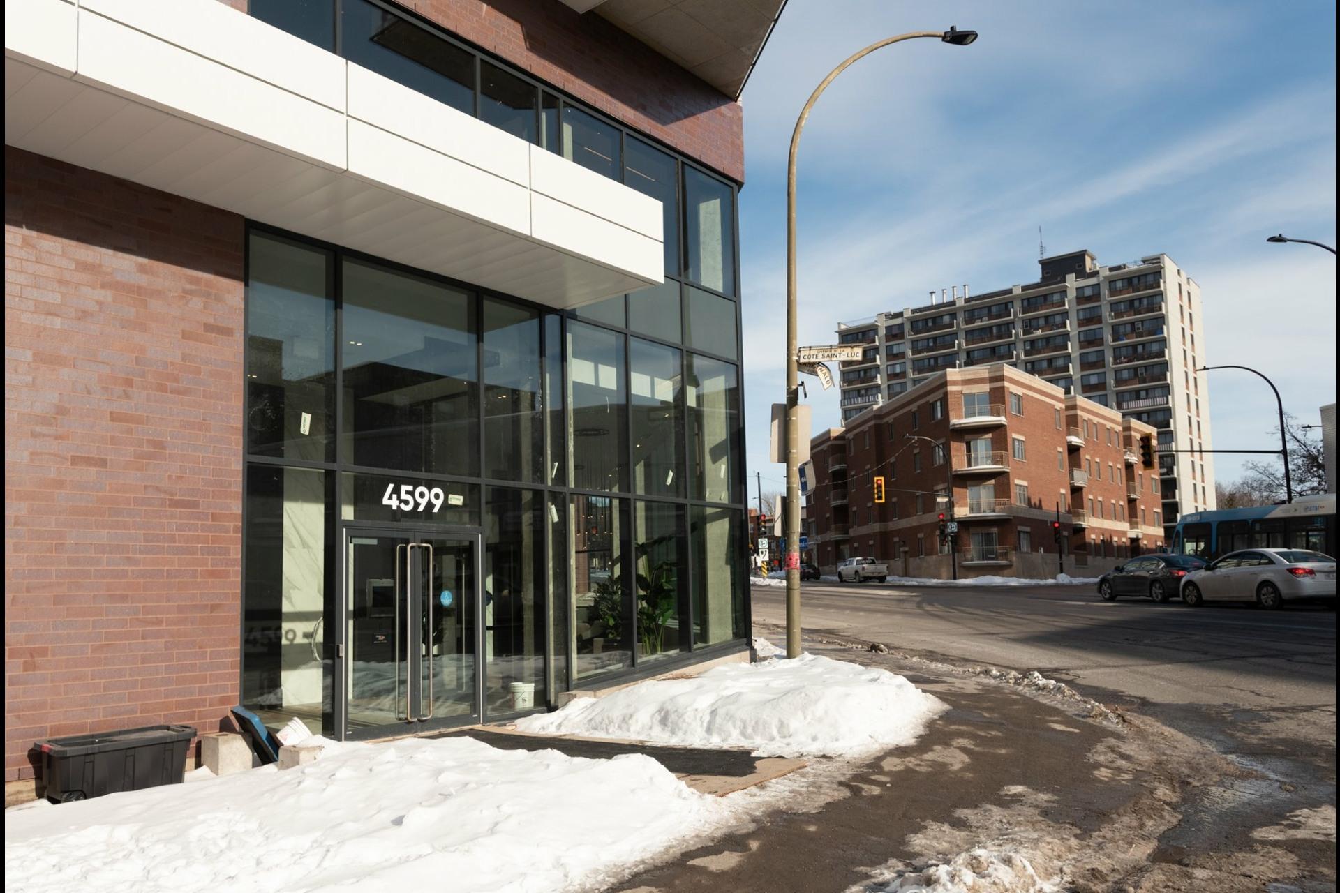 image 34 - Appartement À louer Côte-des-Neiges/Notre-Dame-de-Grâce Montréal  - 5 pièces
