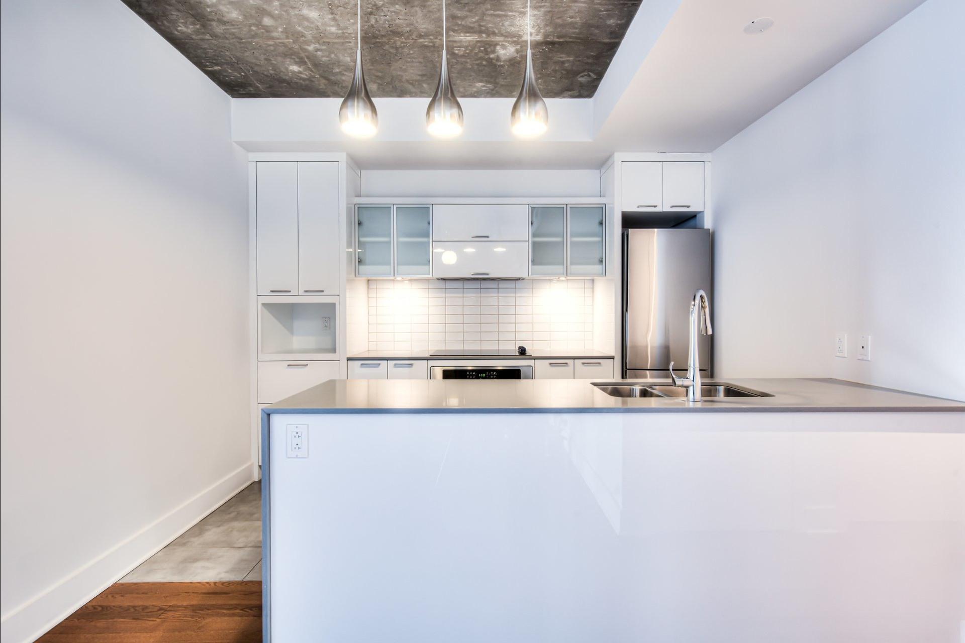 image 10 - Appartement À vendre Le Sud-Ouest Montréal  - 7 pièces