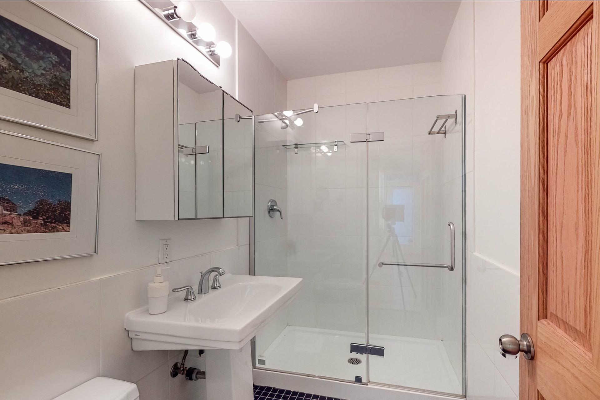 image 15 - Apartment For sale Le Plateau-Mont-Royal Montréal  - 12 rooms