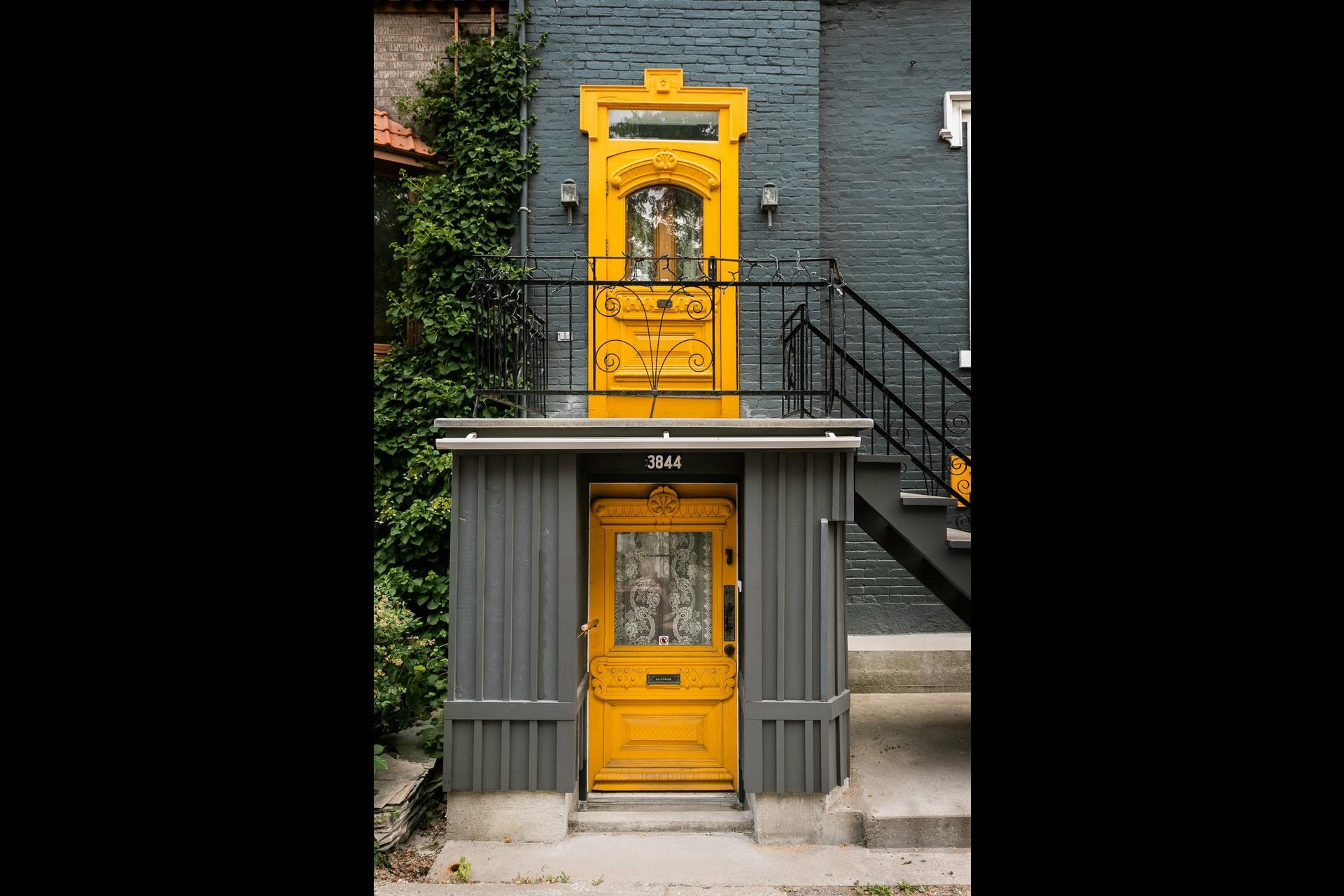 image 4 - Maison À vendre Le Plateau-Mont-Royal Montréal  - 7 pièces