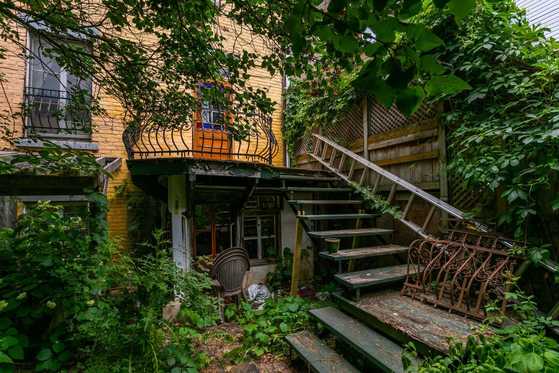 image 20 - Maison À vendre Le Plateau-Mont-Royal Montréal  - 7 pièces