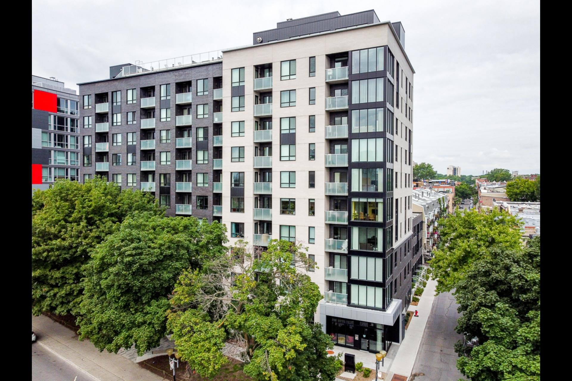 image 13 - Condo For rent Montréal
