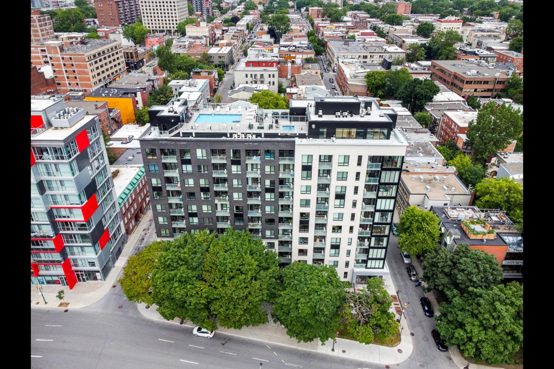 image 18 - Condo For rent Montréal