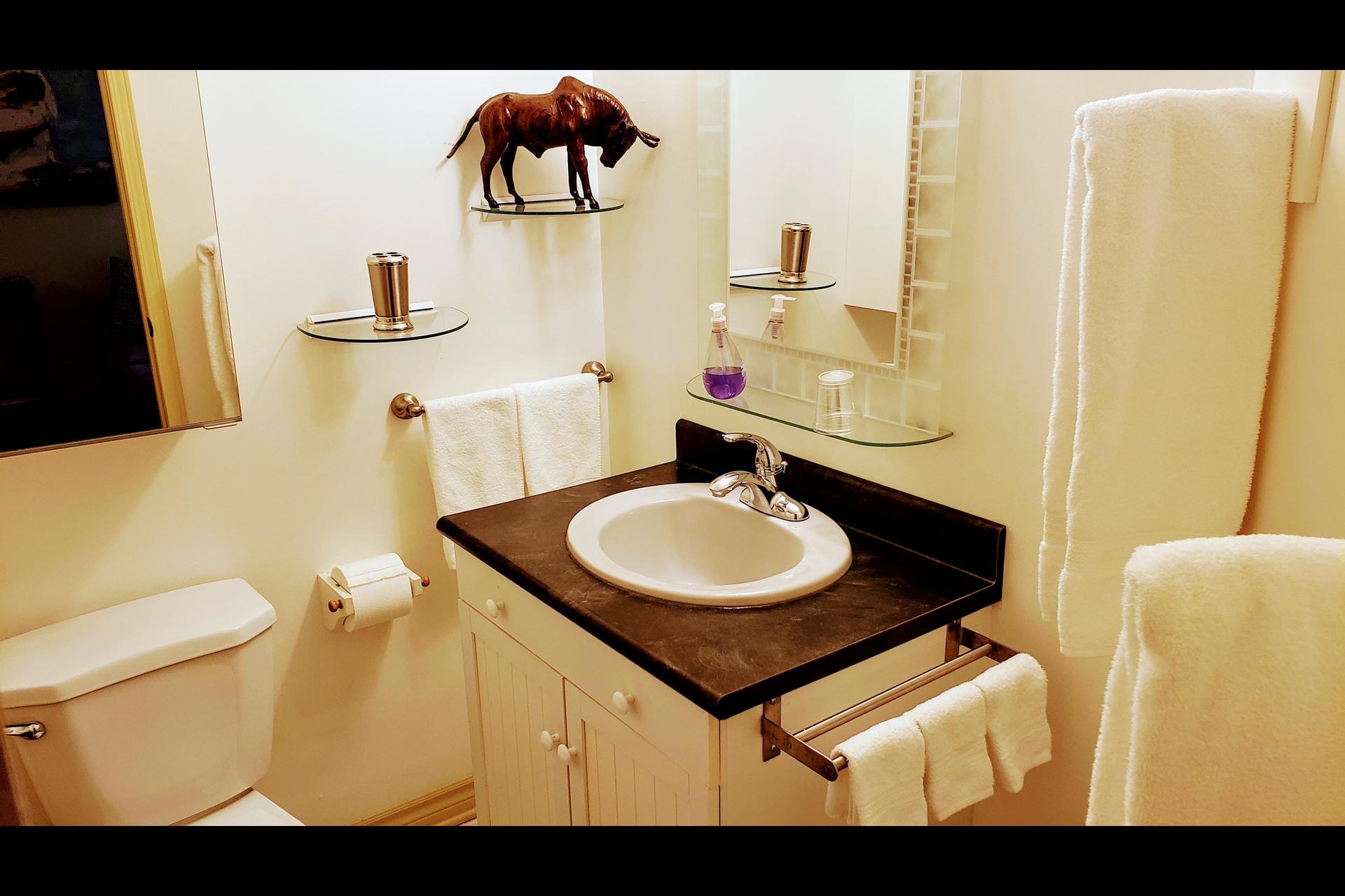image 7 - Waterfront Short rental Gatineau District des Riverains - 1 room