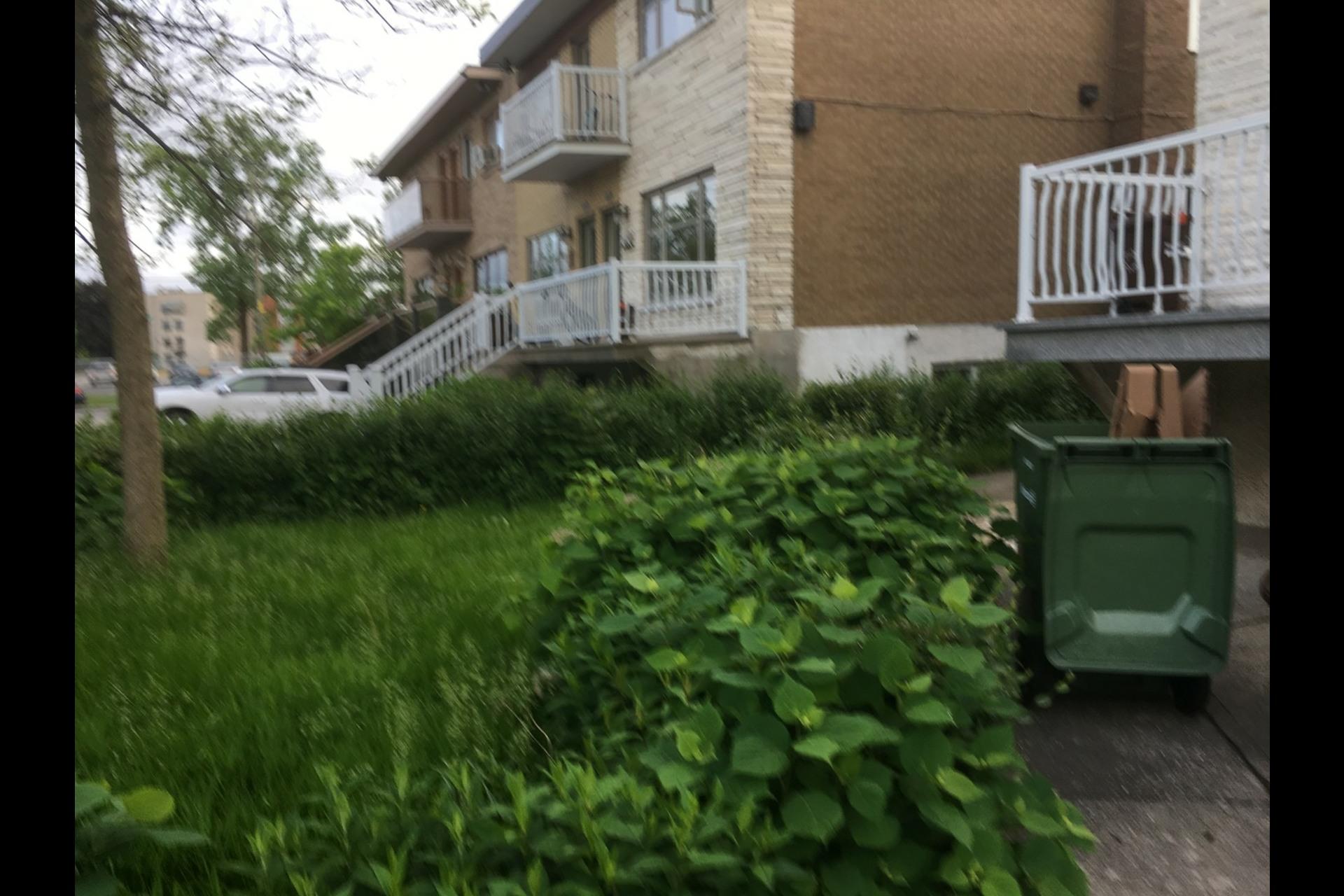 image 1 - Appartement À louer Montréal Rosemont - 5 pièces