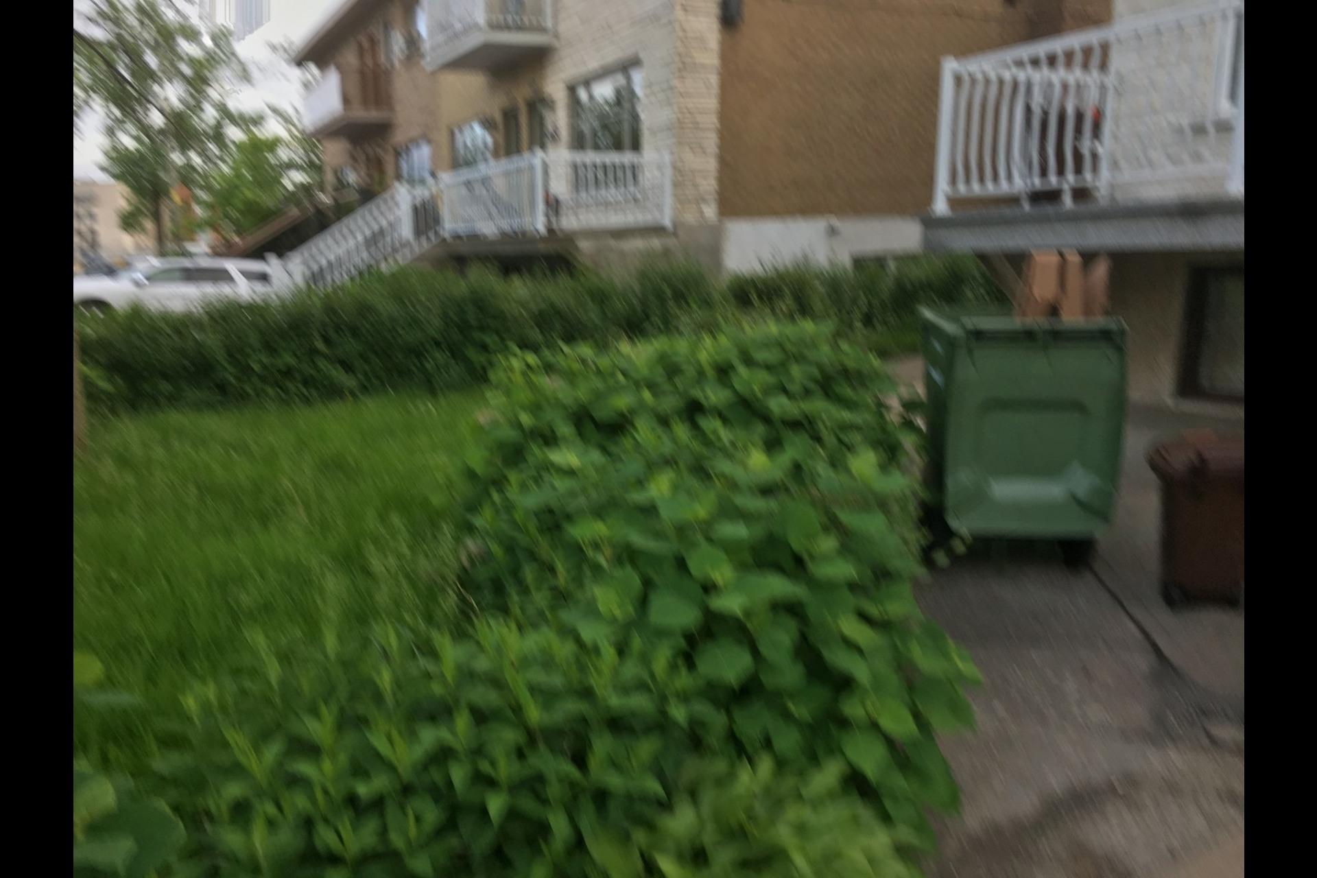 image 2 - Appartement À louer Montréal Rosemont - 5 pièces