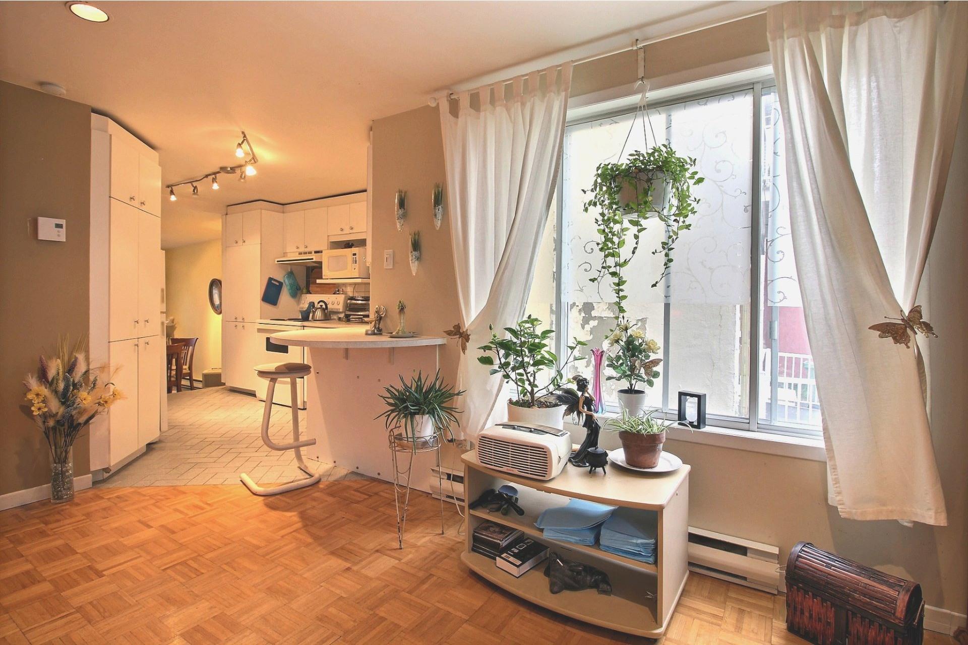 image 14 - Duplex À vendre Montréal Anjou  - 4 pièces