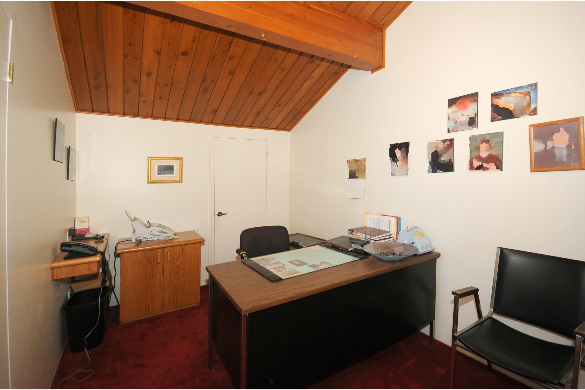 image 14 - Maison À vendre Saint-Ambroise-de-Kildare - 10 pièces