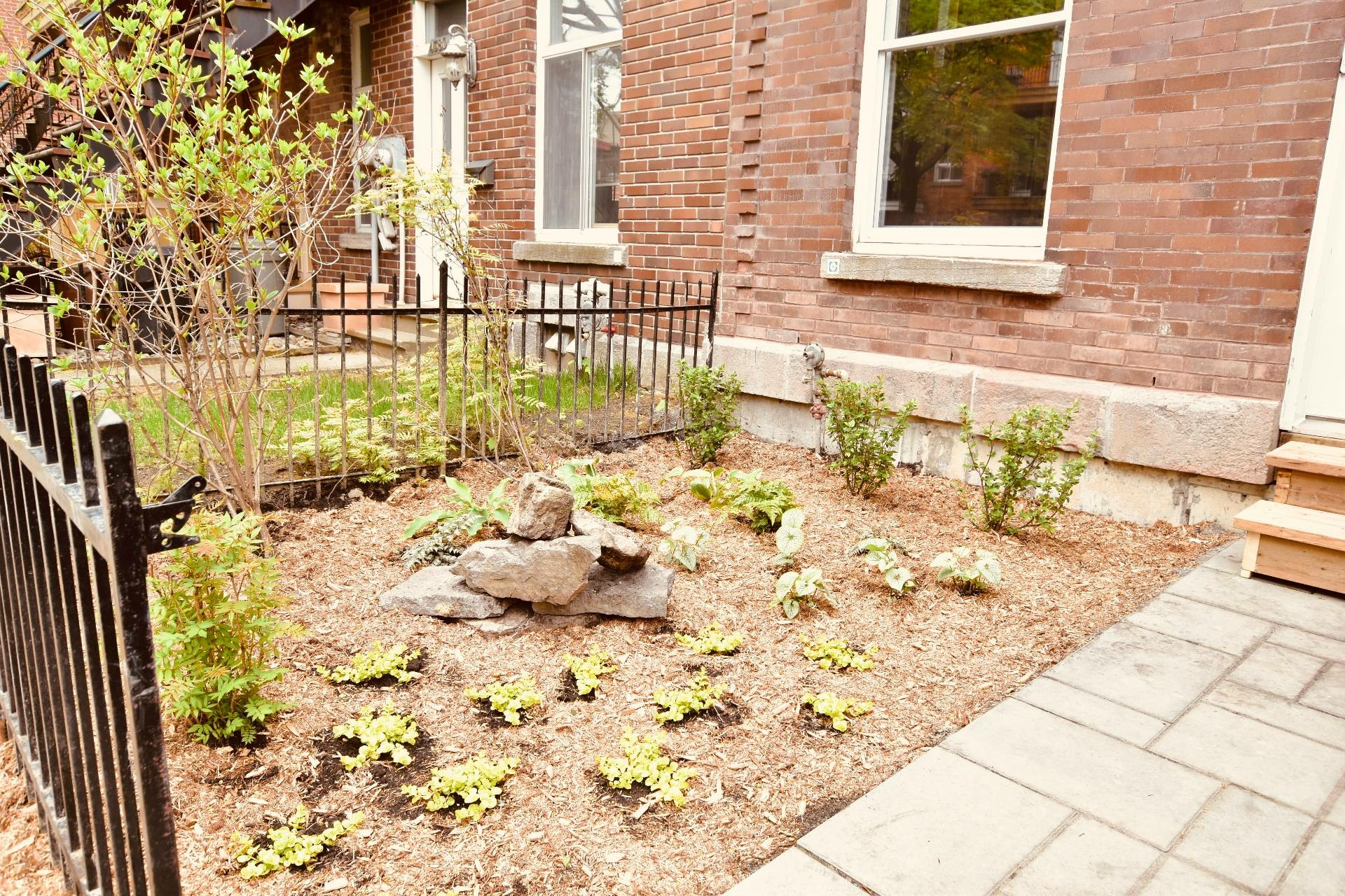 image 36 - Maison À louer Montréal Le Plateau-Mont-Royal  - 14 pièces