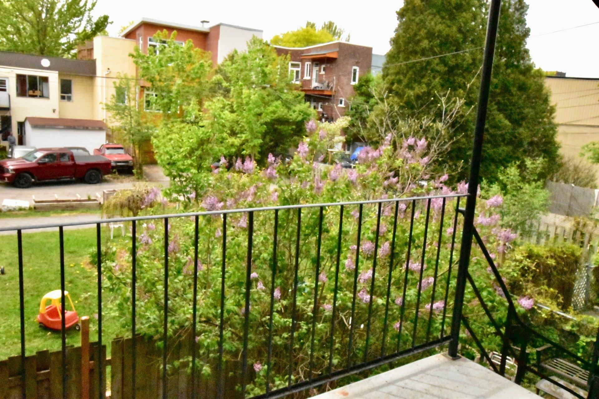 image 27 - Maison À louer Montréal Le Plateau-Mont-Royal  - 14 pièces