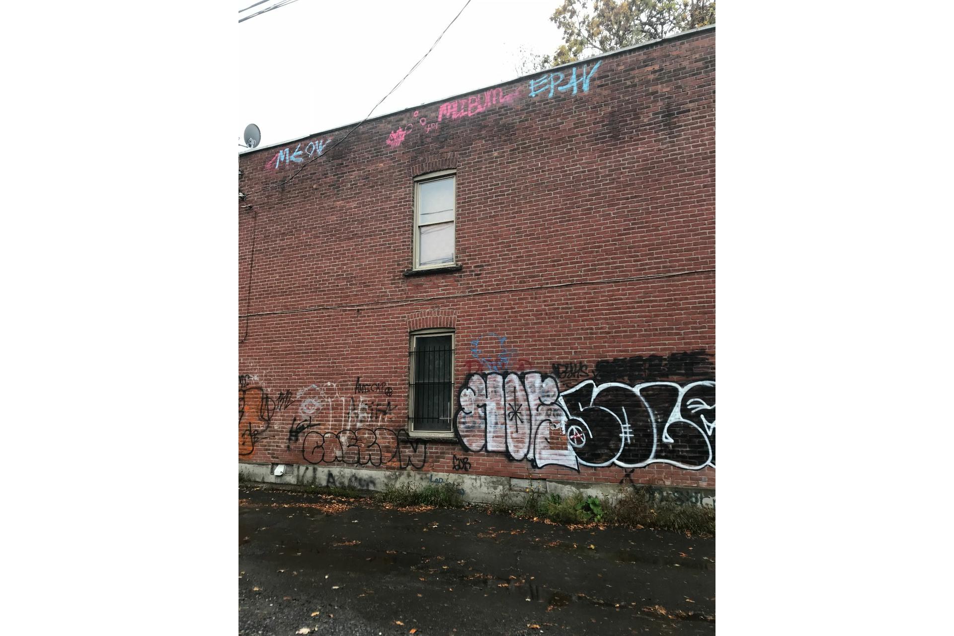 image 9 - Quintuplex À vendre Montréal Mercier/Hochelaga-Maisonneuve  - 4 pièces