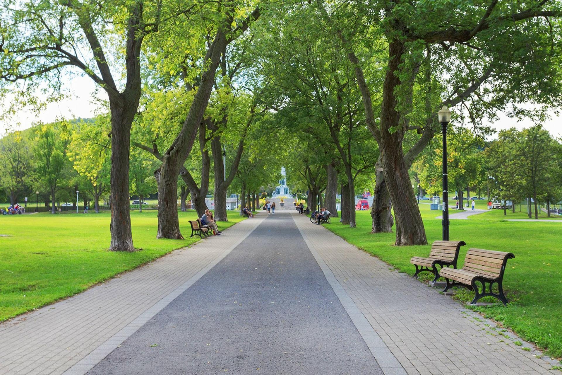 image 42 - Maison À vendre Montréal Le Plateau-Mont-Royal  - 14 pièces