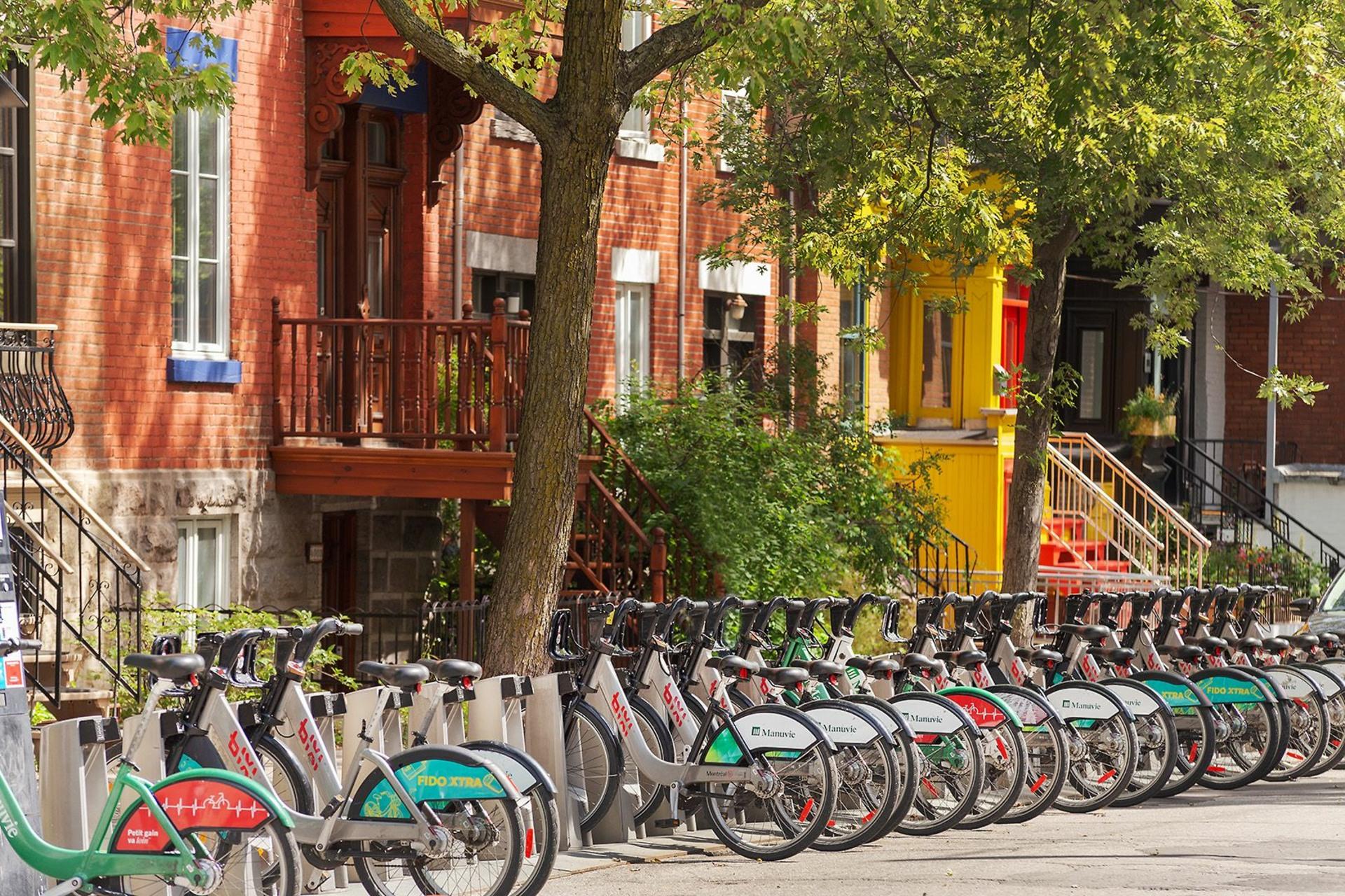 image 39 - Maison À vendre Montréal Le Plateau-Mont-Royal  - 14 pièces