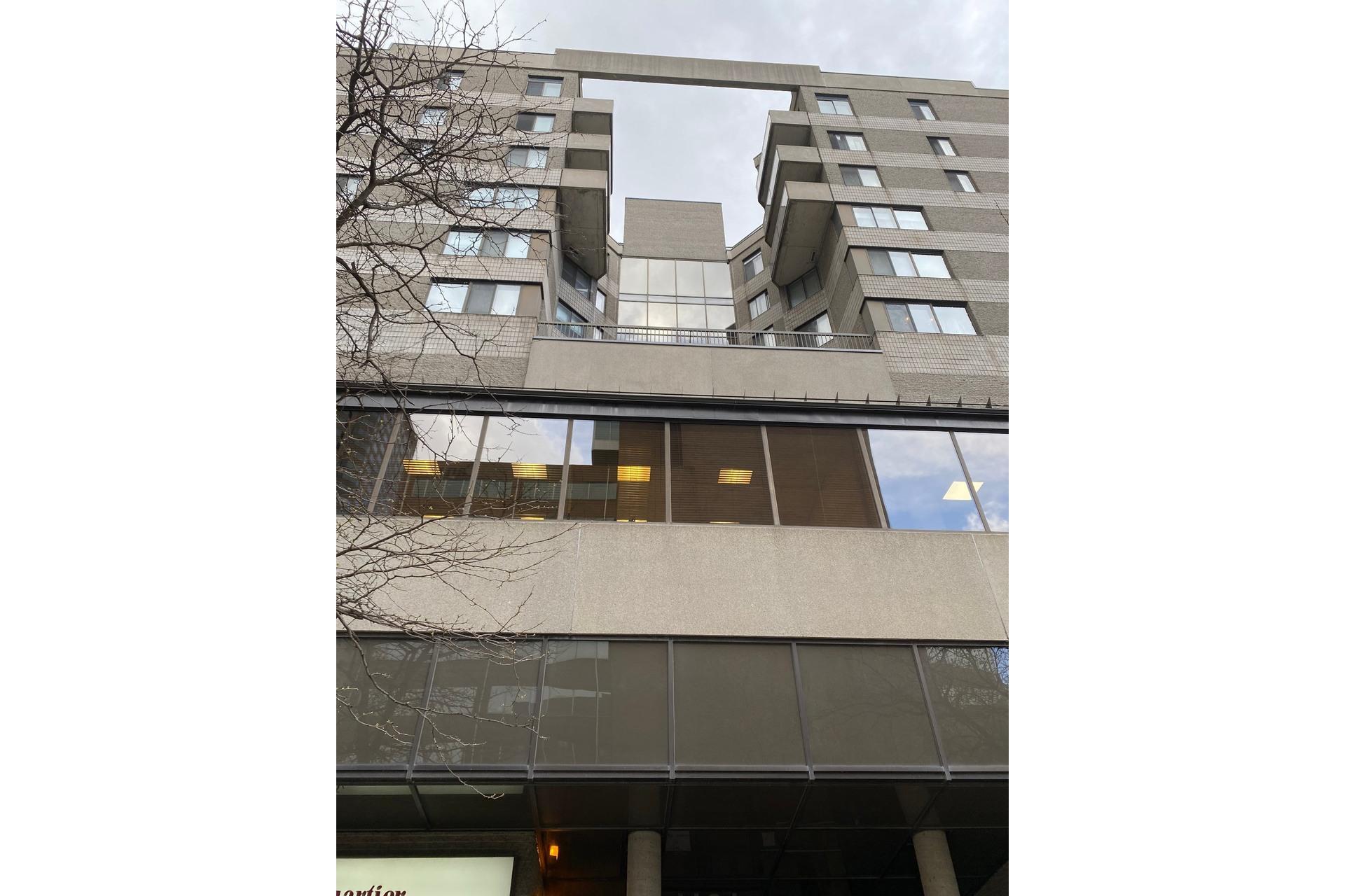 image 4 - Apartment For rent Ville-Marie Montréal  - 6 rooms