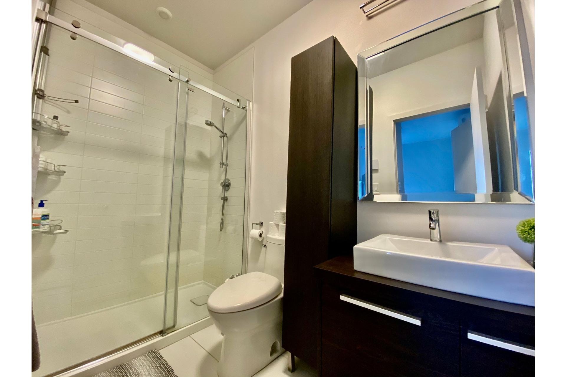 image 13 - Appartement À vendre Lachine Montréal  - 7 pièces