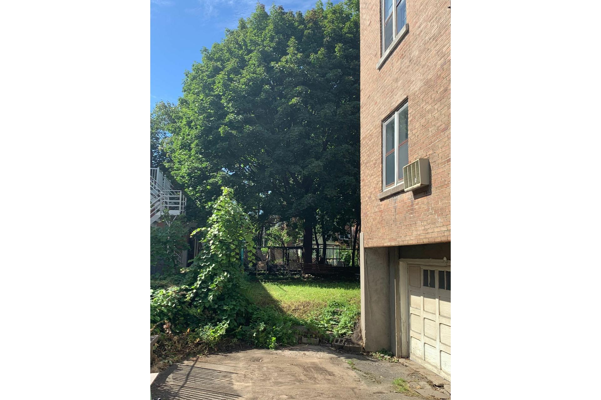 image 6 - Duplex À vendre Côte-des-Neiges/Notre-Dame-de-Grâce Montréal  - 5 pièces