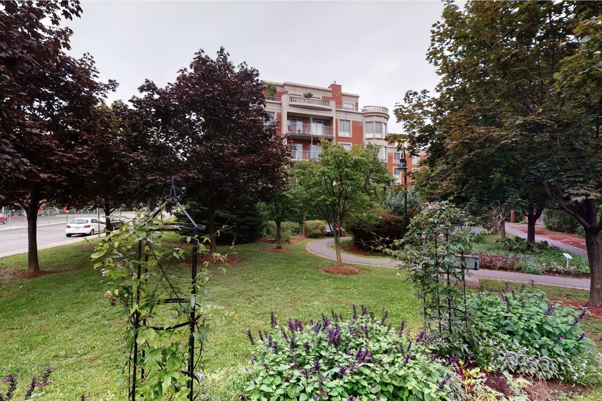 image 1 - Apartment For sale Mont-Royal - 8 rooms