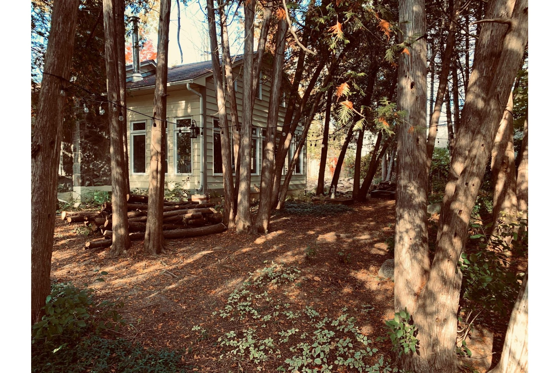image 18 - Maison À vendre Rosemère - 13 pièces