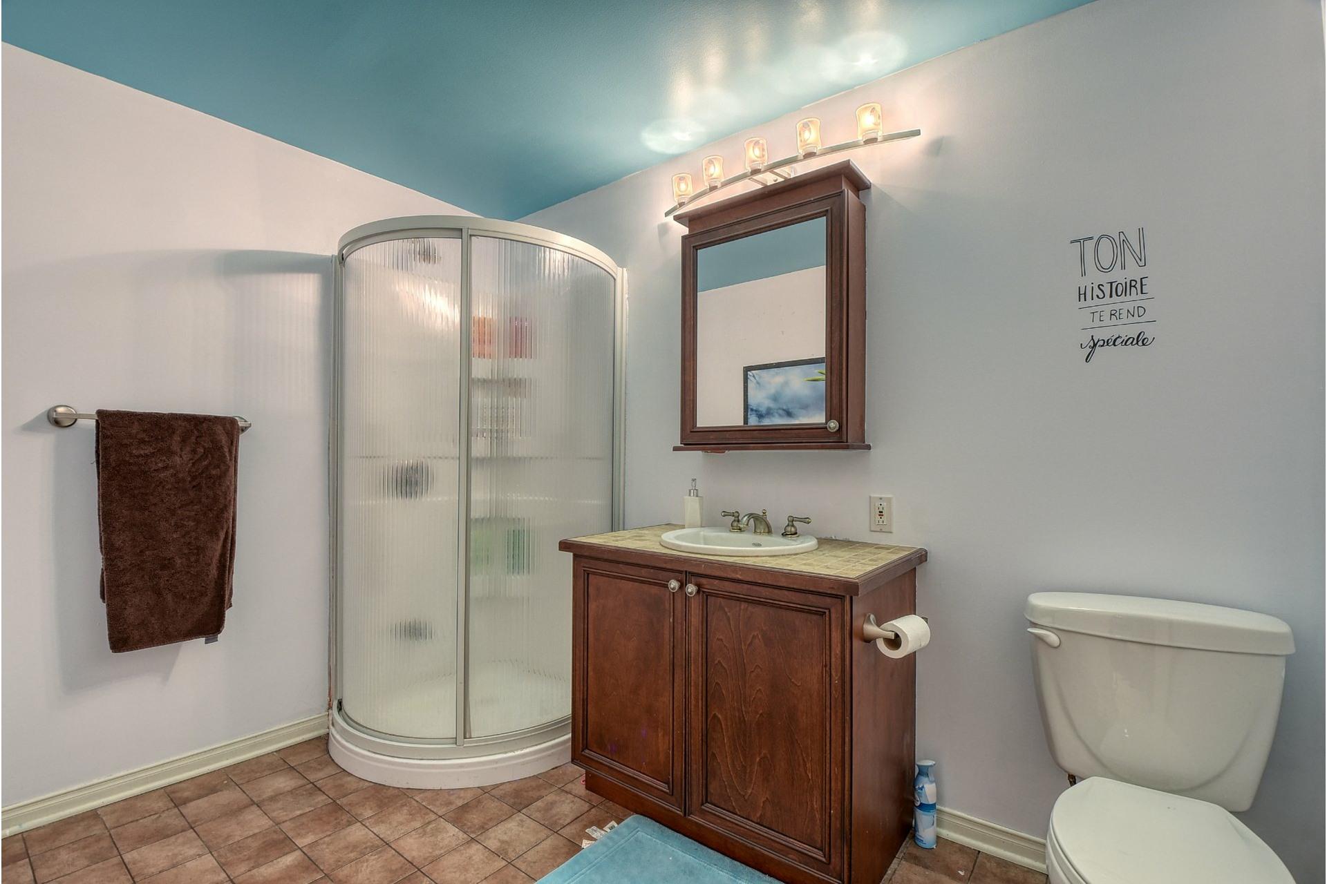 image 20 - Maison À vendre Blainville - 12 pièces