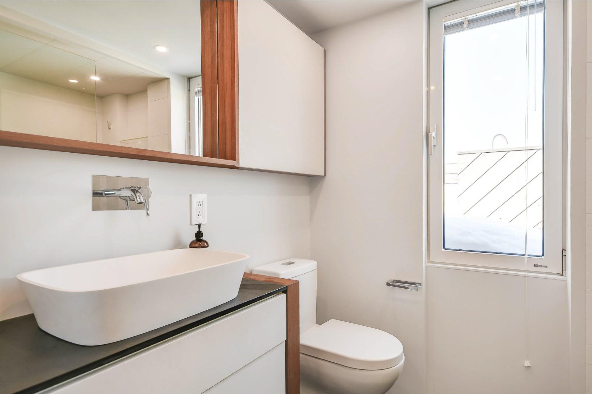 image 12 - Appartement À vendre Le Plateau-Mont-Royal Montréal  - 8 pièces