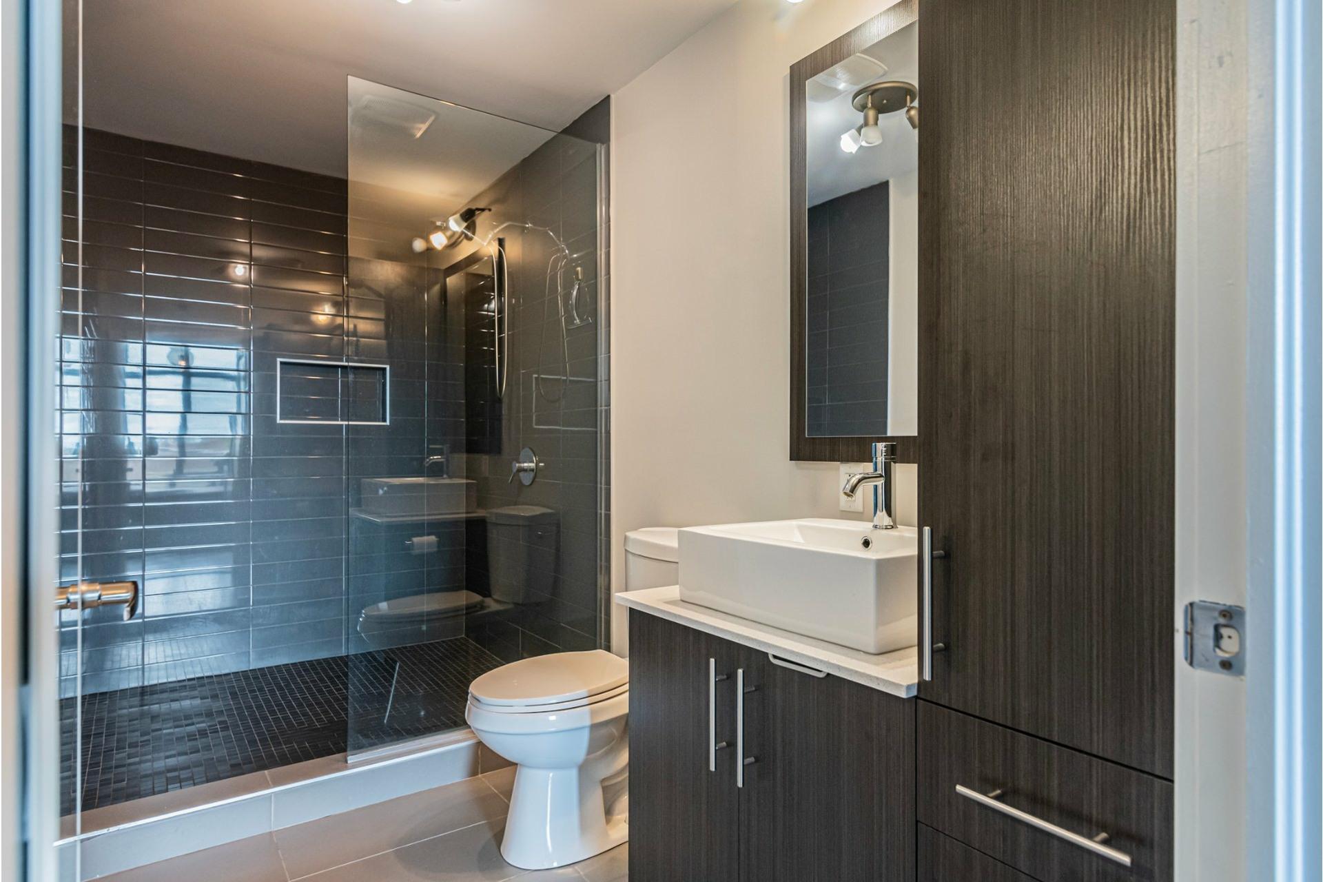 image 23 - Appartement À vendre Lachine Montréal  - 9 pièces